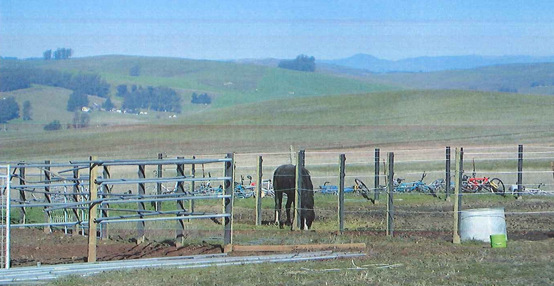Jill Burnell's Gray Fox Farm in Marin County