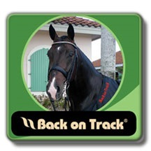Back On Track Therapeutic Horse Products