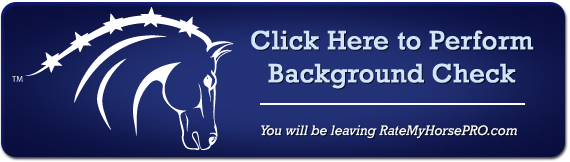 Perform Background Check Online