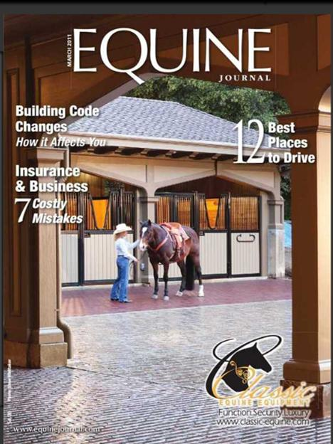 Due diligence in horse community