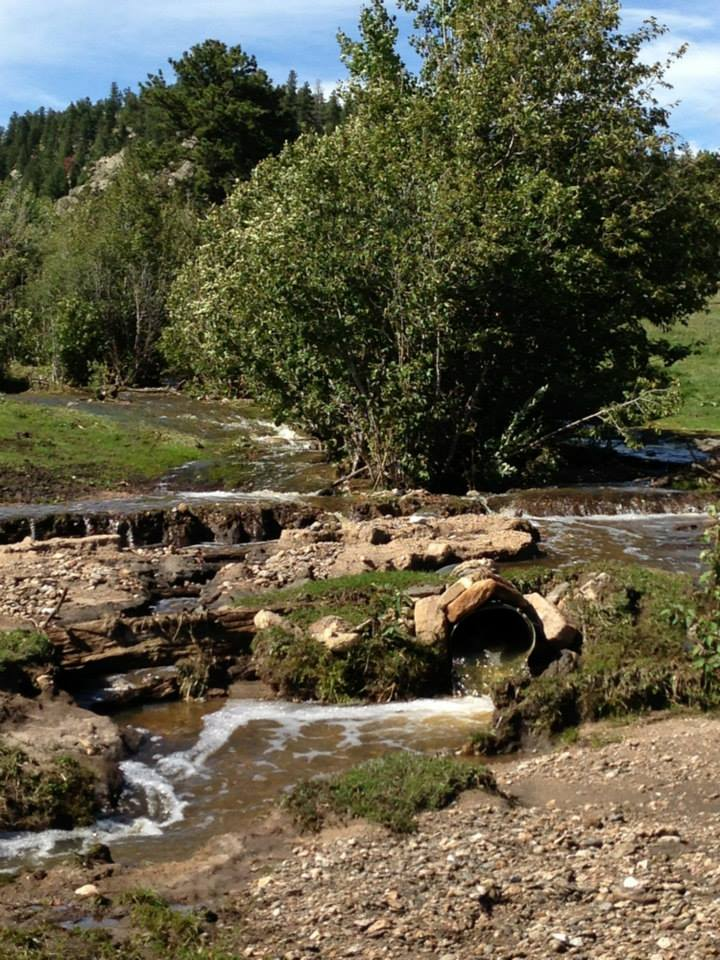 The owners of Wild Basin Ranch in Colorado are working through devastating blows, including the death of a stallion, afterevacuating last week due to the flooding.