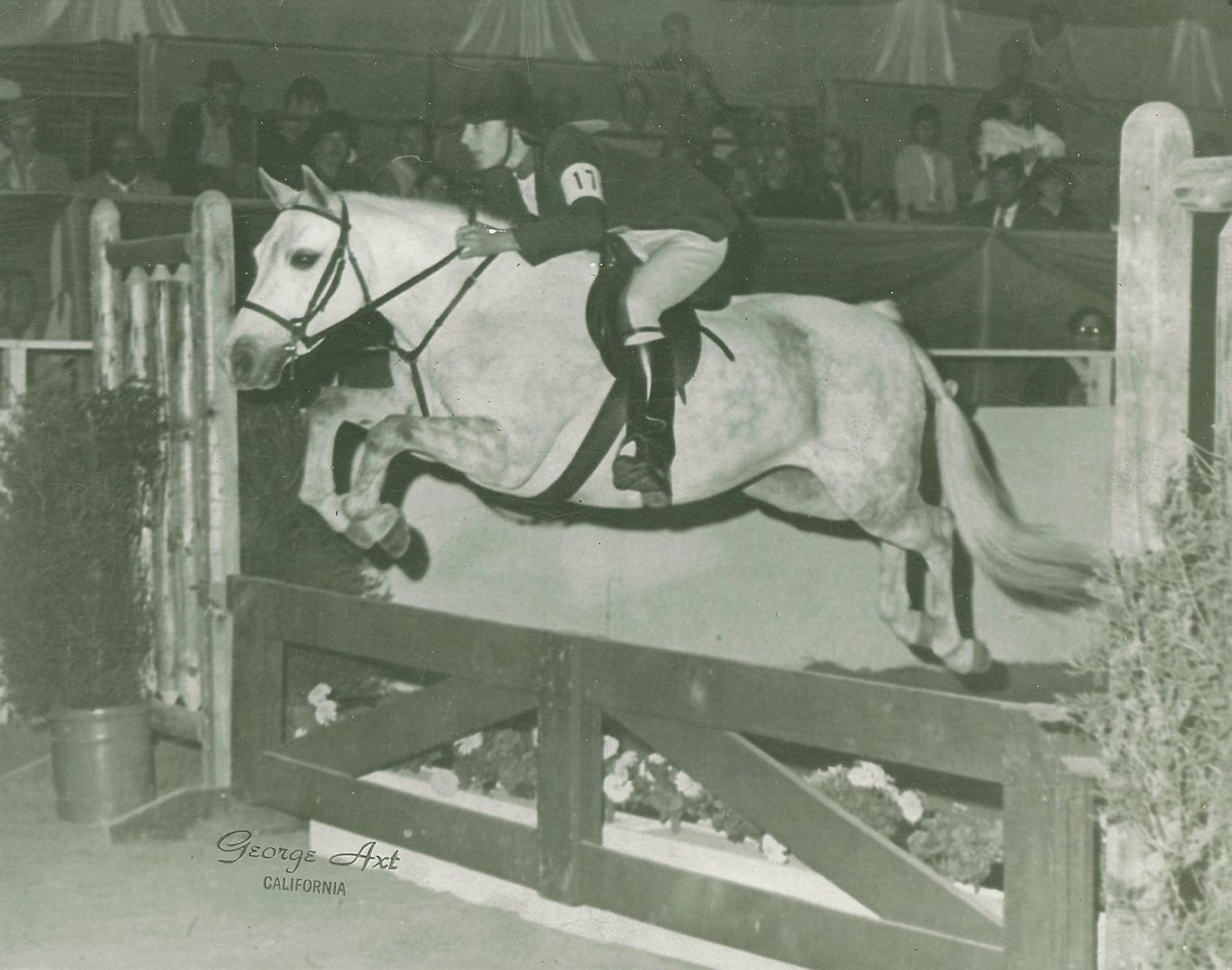 "Nancy Baroody, six-time Horse of the Year Champion in the Pony Divisions, says, ""USEF is to be highly commended for their action. We need positive role models for our young riders and allowing such a person's presence at Pony Finals, and partaking of the festivities surrounding the Wheeler Museum certainly does not meet the standards of good conduct."""