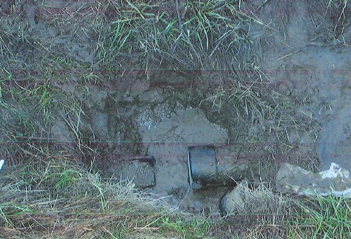 Raw sewage dumps on the Gray Fox Farm property