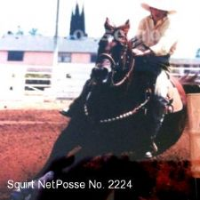 Officials believe Squirt was also sold to horse slaughter.