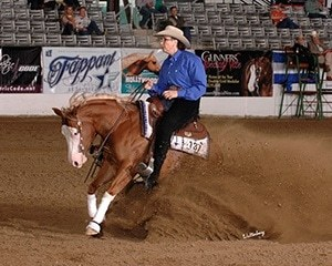 Bella was sired by Gunner and earned over $8000 through 2012.