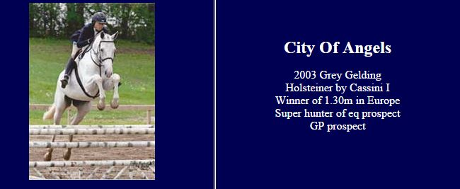 Screenshot from Debi Connor's website of the horse sales ad for City of Angels.