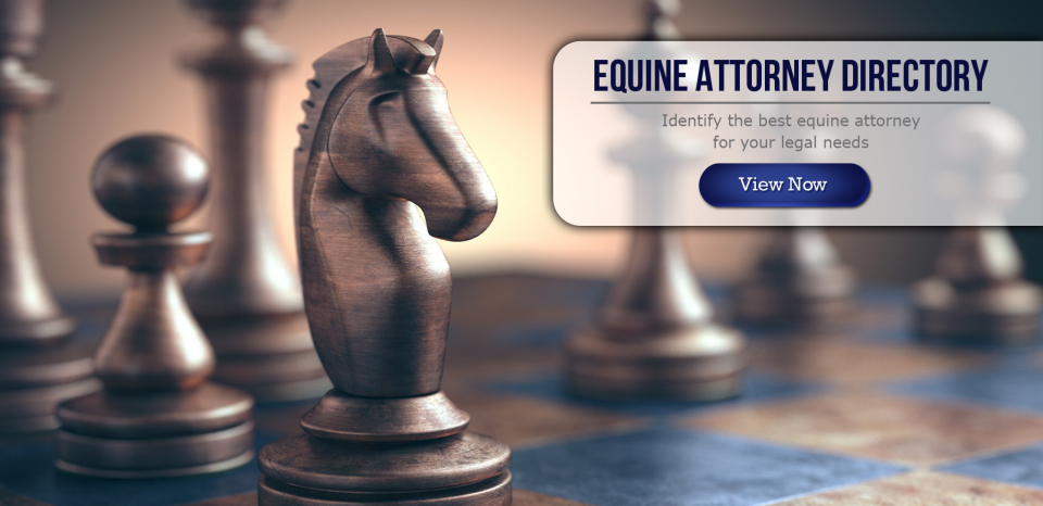 Equine Attorneys by state