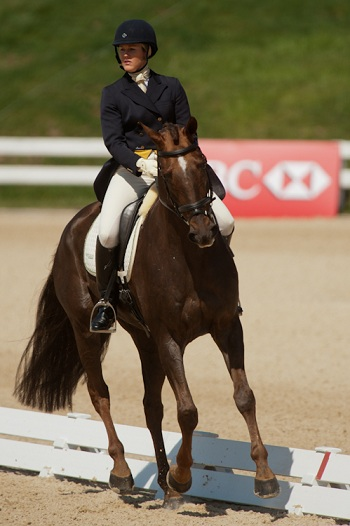 Springer and Arthur Lead Rolex After Dressage