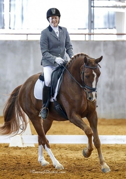 Florida Horse Sales: Do You Know the Law?