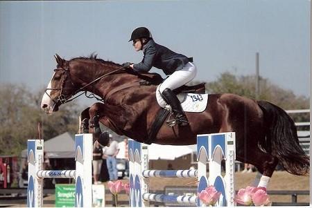 WI Appeals Court Affirms Decision Regarding Jumper Stallion