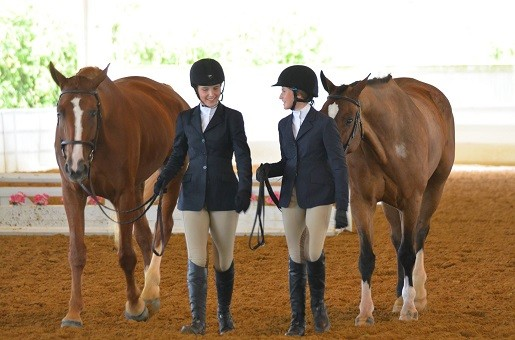 """I think I'm even more shocked now than when we first found out,"" says Debra Buis. She boards her daughters' two horses at Masterpiece Equestrian Center, where three horses died from monensin toxicity, according to necropsies."