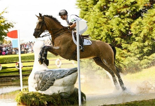 FEI Considers Olympic Format Changes for Equestrian Sports