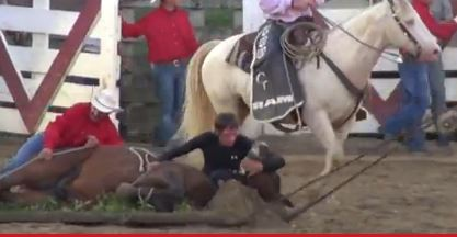 New Jersey SPCA Investigating Rodeo Horse's Death