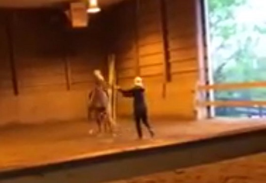 Video of Alleged Abuse Sparks Investigation into Cumberland Riding Academy