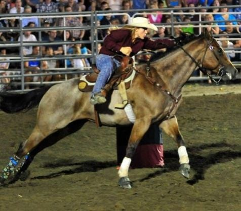 Sound Shoeing for Timed Event Horses