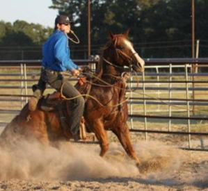 Disturbing Details Emerge; More Arrests in Arkansas Horse Theft