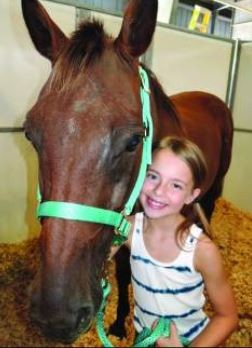 Abused FL Horses Find Happy Ending after Auction