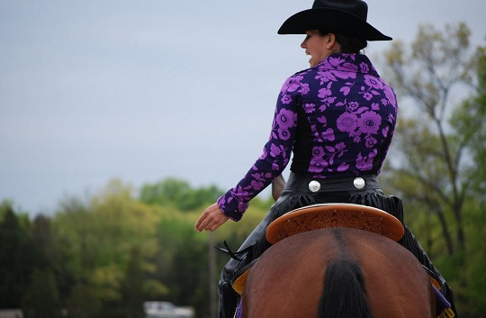 AQHA Approves Animal-Welfare Related Rule Changes