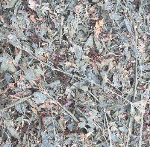NC Investigators Narrow Contaminated Blister Beetle Hay to 500 Bales