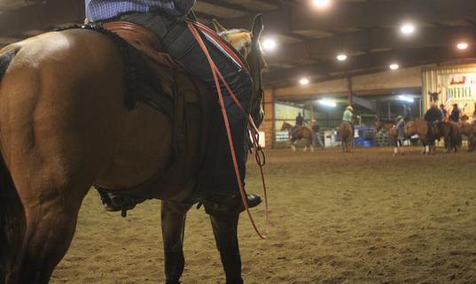 Details Emerge in Dayle Kountz' Prior Animal Cruelty Conviction