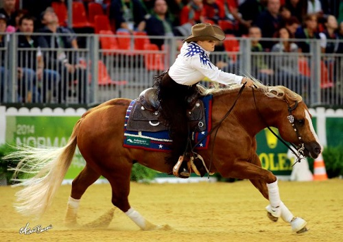 Reining Gold for Team USA