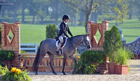 Horse Leases: What You Need to Know