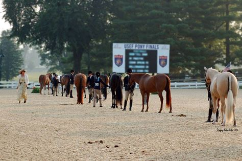 New Rule in Effect for Pony Finals