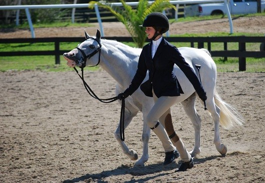 USEF Halts Federation-Generated Protest Measurements in 2015