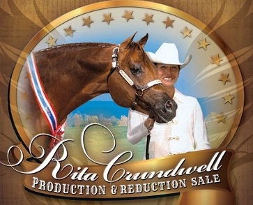 Indictment: Rita Crundwell Stole $53 million to Fund Horses