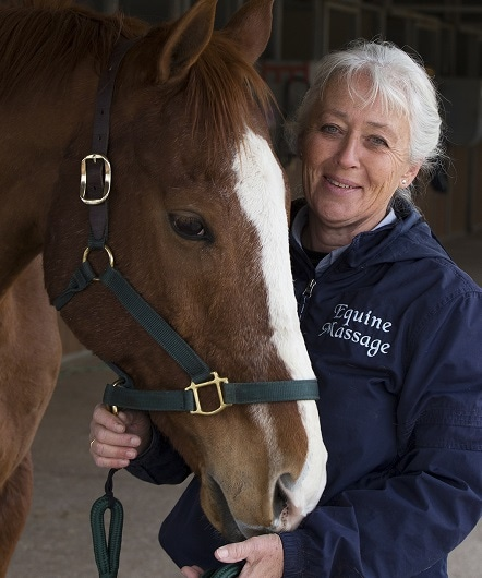 Equine Massage Therapists File Suit Against Arizona's Vet Board
