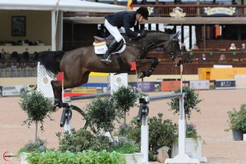 Show Jumping's Holger Hetzel Sued for $1M-plus for Fraud
