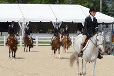Devon Horse Show Confirms Bielefeld as Judge Despite Sexual Assault Charges