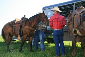 Government Shutdown Could Impact Horse Industry