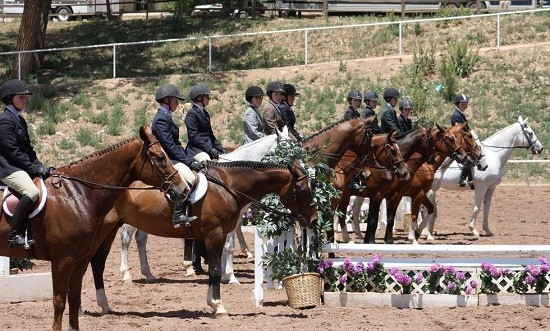 USEF Announces Warning Regarding Calming Supplements Containing Phenibut