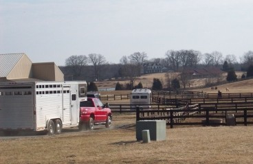 New Guidelines Enacted for Hauling Horses
