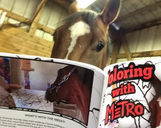 Metro Meteor Adds Coloring Book to Franchise