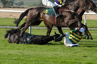 Senate Hearing Scrutinizes Drugs in Horse Racing