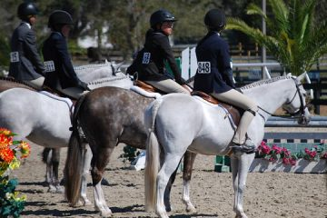 The Slippery Slope of USEF's Rule 404