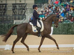 Arthur is King in Kentucky after Dressage