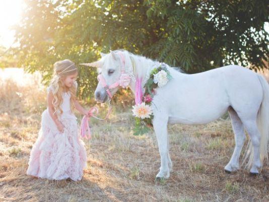'Unicorn' Pursuit has Happy Ending