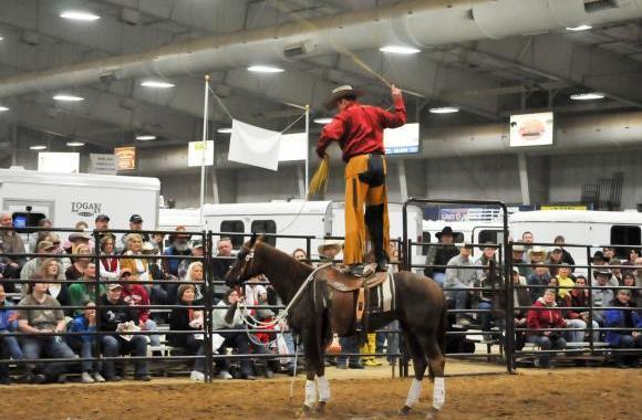 AQHA Professional Horseman Shamus Haws Charged in Horses' Deaths