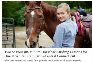 Two or Four 90-Minute Horseback-Riding Lessons for One at White Birch Farm