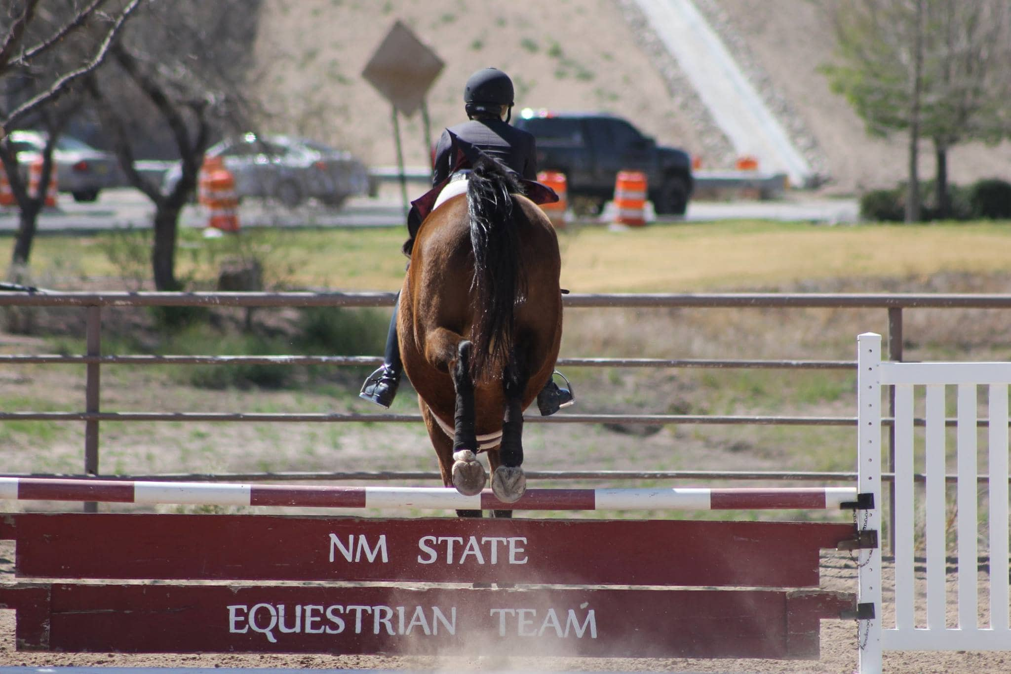 Ncaa Not Dropping Equestrian Program As Emerging Sport