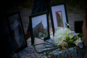 Whisper Ridge Equine Sanctuary horses died