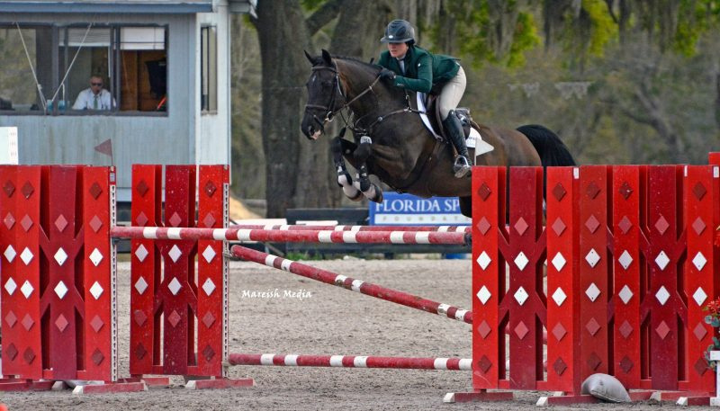 I look forward to helping solve the issues that confront the sport horse industry in the United States, said Uboh in a release.