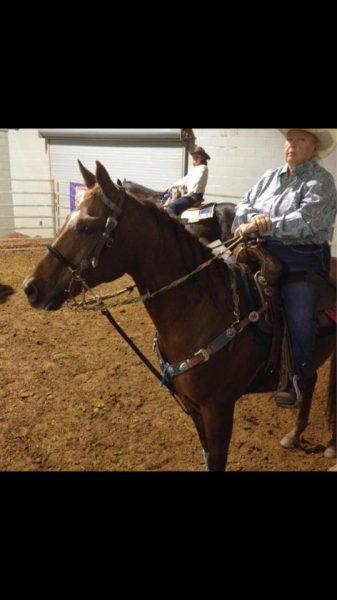 Contaminated Horse Feed Questions regarding Nutrena