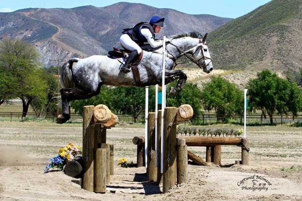 Tf Kreisler Dies At Woodside International Horse Trials