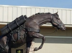 Robin Hutton donated the lifesize bronze statue of the amazing mare Sgt. Reckless.