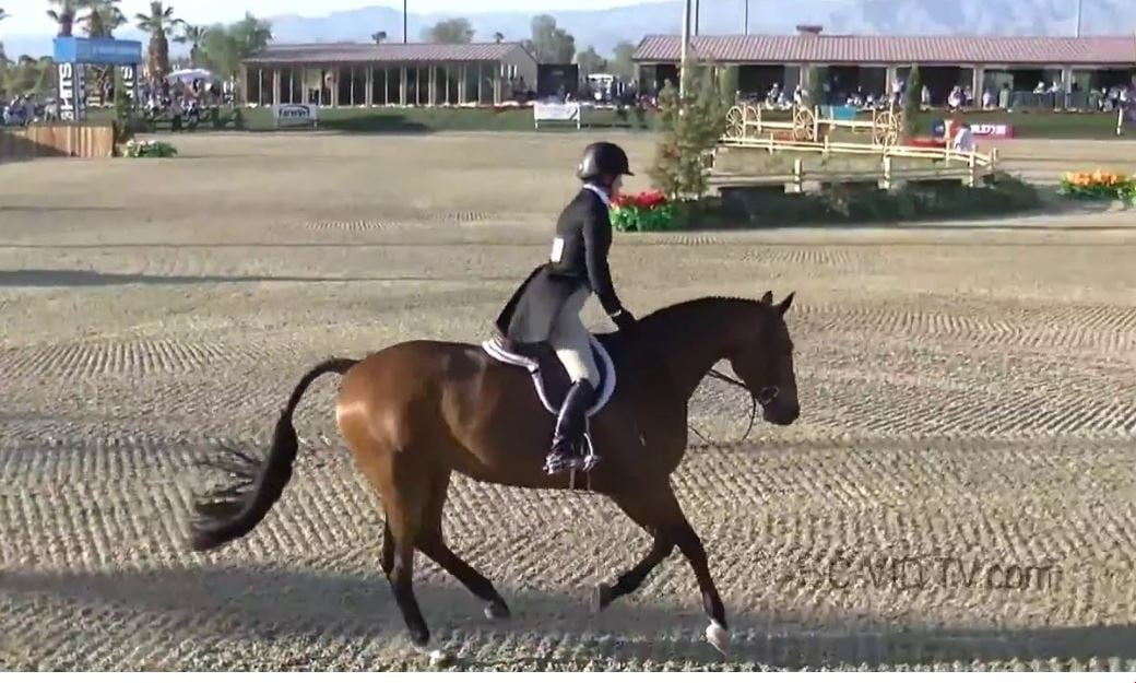 The United States Equestrian Federation (USEF) grants a rehearing petition filed by two hunter/jumper trainers from Lane Change Farm.Kelley Farmer and Larry Glefke claim they were not properly notified regarding a GABA violation and hearing.