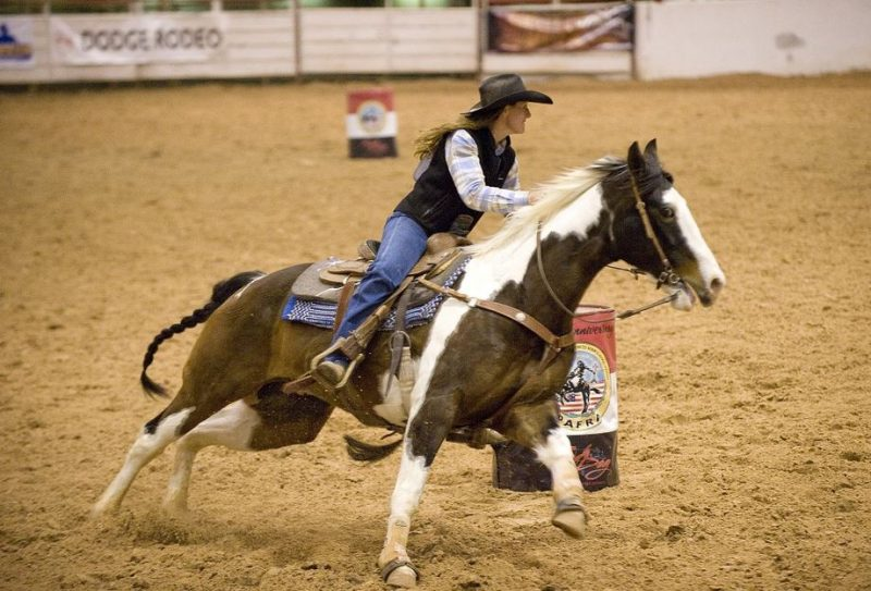 Neurologic EHV Confirmed in Texas Barrel Racing Horse